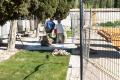 Ayuntamiento de Guadalajara: debate de la moción conjunta presentada por IU y PSOE contra las obras en el cementerio