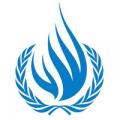 Observaciones preliminares del Grupo de Trabajo sobre las Desapariciones Forzadas o Involuntarias de la ONU